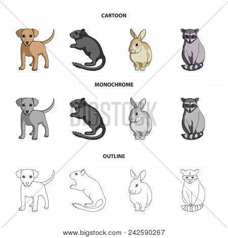 Puppy, Rodent, Rabbit And Other Animal Species.animals Set Collection Icons In Cartoon, Outline, Mon