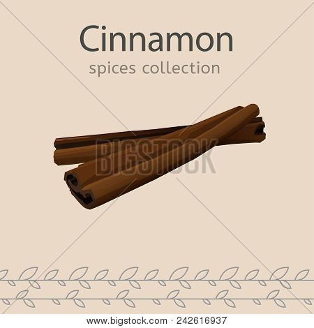 Cinnamon Image Isolated On A Light Beige Background. Spices Collection. Vector Illustration.