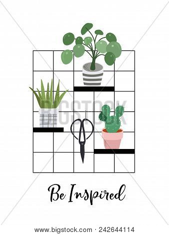Urban Jungle, Trendy Home Decor With Plants, Planters, Cacti, Tropical Leaves , Macrame Hangers With