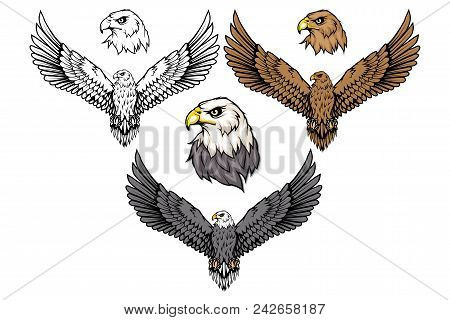 American Eagle Set. Bald Eagle Logo. Wild Birds Drawing. Head Of An Eagle. Vector Graphics To Design