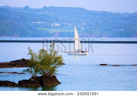 May 16, 2018 In Hilo, Hi:  Sail Boat Sailing Beyond Volcanic Lava Rocks In The Calm Waters Of Hilo B