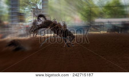 Bucking Bronco Horse At Indoor Country Rodeo
