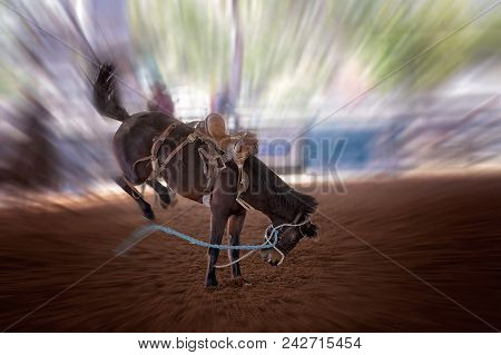 Riderless Bucking Bronco Horse At Indoor Country Rodeo, With Motion Blur