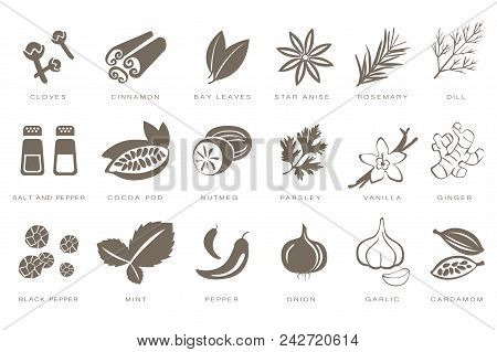 Fragrant Spices Linear Icons Set, Spices And Seasonings With Names Black Vector Illustrations Isolat