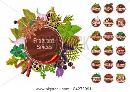 Fragrant Spices Set, Thyme, Saffron, Pepper, Garlic. Cardamom, Star Anise, Rosemary, Cinnamon, Orega