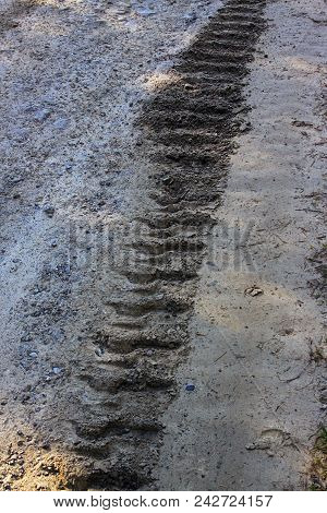 Track of a crawler tractor on a dirt road poster