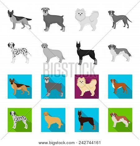 Dog Breeds Monochrome, Flat Icons In Set Collection For Design.dog Pet Vector Symbol Stock  Illustra