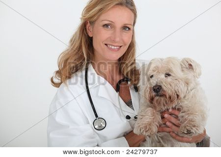 female veterinary and a dog