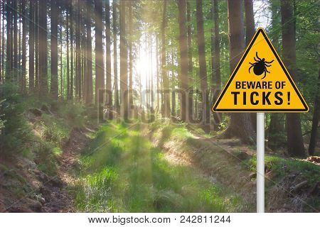 "Yellow warning sign ""beware of ticks"" at a sunny clearing in the forest poster"