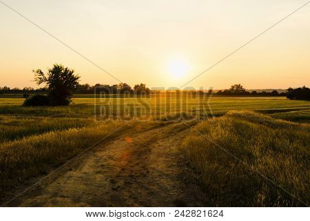 Sunset In Countryside Landscape.fields And Countryside Landscape. Nature Landscape. Sunset In Wheat