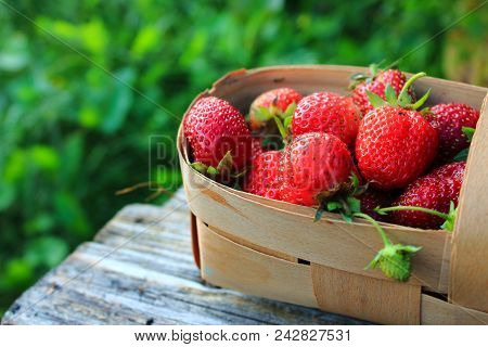 Strawberries in the basket. Strawberries on the table. Summer strawberries in the garden. Berries in summer. Juicy berry. Strawberry jam