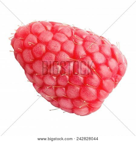 Isolated Berries. Fresh Raspberry Isolated On White Background With Clipping Path As Package Design