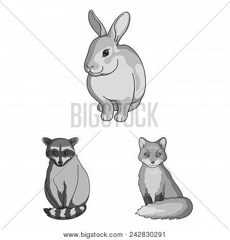 Realistic Animals Monochrome Icons In Set Collection For Design. Wild And Domestic Animals Vector Sy