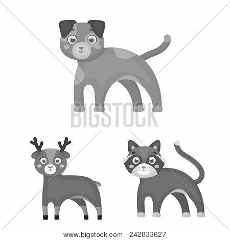 Toy Animals Monochrome Icons In Set Collection For Design. Bird, Predator And Herbivore Vector Symbo