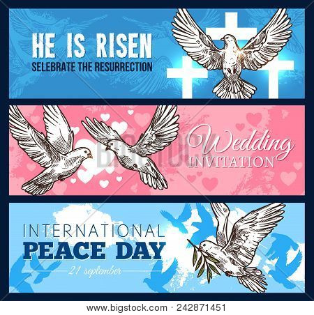 White Dove Bird Sketch Banner Set For Wedding Ceremony, Easter Religion Holiday And World Peace Day