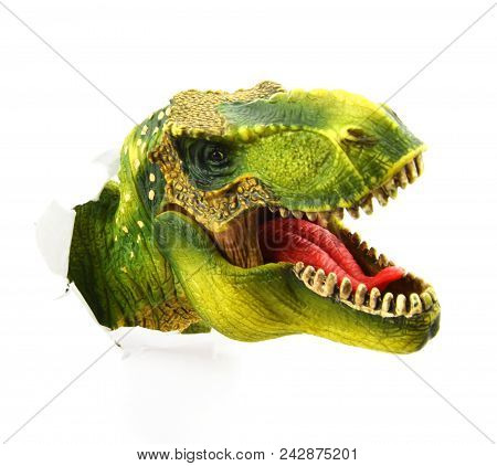 Trex Dinosaur Head Isolated On White With Ripped Paper Wall