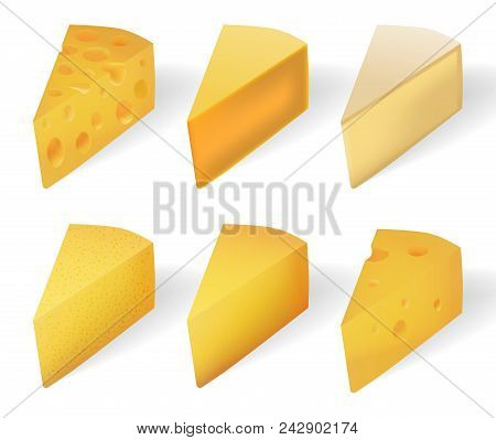 Yummy Yellow Cheese Isolated On White. Realistic Cheese Types Set Isolated On White. Vector Illustra