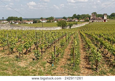 Vougeot, France, May 19, 2018 : Clos De Vougeot Is A Wall-enclosed Vineyard, A Clos, In The Burgundy