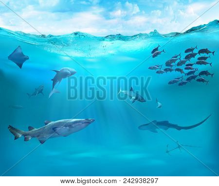 Ocean with sharks. Reef with marine animals.