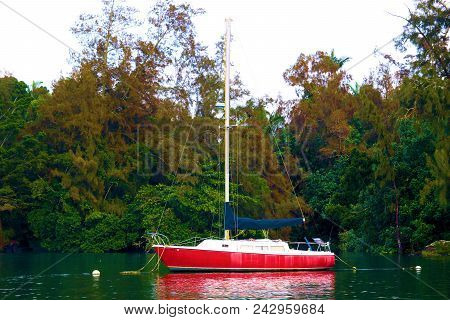 July 16, 2018 In Hilo, Hi:  Anchored Sail Boat Surrounded By A Lush Green Forest Taken In Hilo, Hi W
