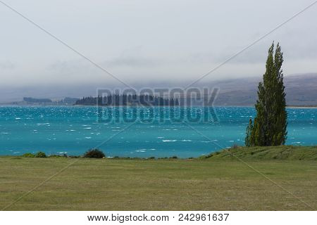 Grassland And Lake Tekapo In New Zealand