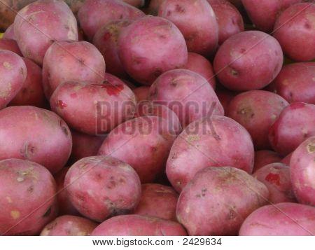 Redpotatoes121407