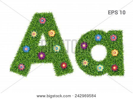 Aa - Capital And Capital Letters Of The Alphabet With A Texture Of Grass. Moorish Lawn With Flowers.