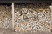 stacked firewood in wood shed woodpile stockpile poster