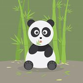 Panda Eating Leaves In The Bamboo Forest poster