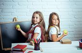 Little girls eat apple at lunch break. Happy school kids at lesson in september 1. Friendship of small sisters in classroom at knowledge day. Back to school and home schooling. School time of girls. poster