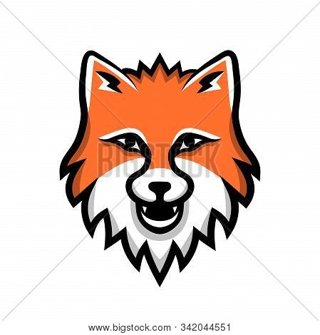 Red Furry Fox Head Grinning, Cartoon Sport Team Logotype Isolated On White Background. Colorful Char