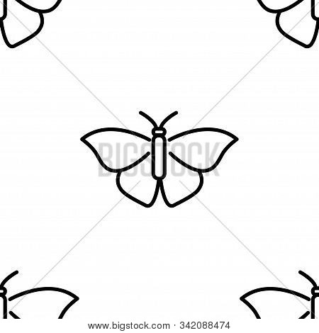 Butterfly. Colored Vector Patterns In A Linear Style. Biology, Science, Entomology, Zoology. Vector