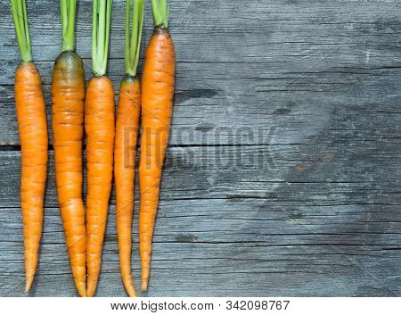 Orange Ripe Young Carrots On Rustic Weathered Wooden Table. Harvest Of Organic Vegetables .