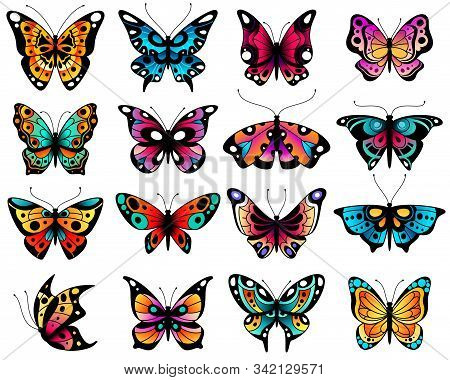 Butterfly. Colorful Stylized Butterflies With Openwork Wings, Different Summer Flying Insects. Roman