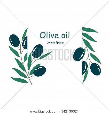 Olive Oil Label, Lorem Ipsum. Black Olive, Green Leaves On White Art Design Element Product Design,