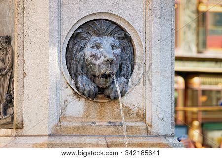 Lion Of Leopoldsbrunnen Fountain On Graben Street In Vienna