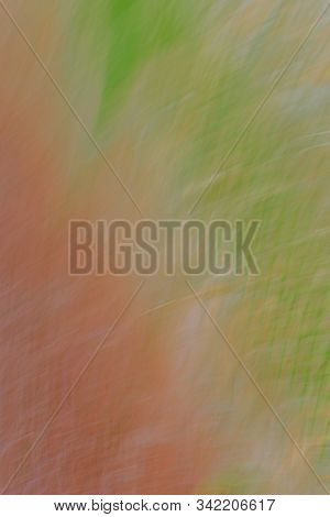 Abstract Windswept Background Using Hues Of Greens And Reds