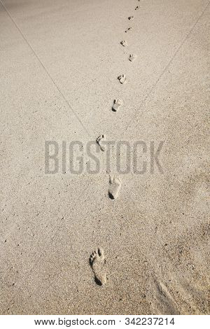 Footsteps on the beach. Footsteps in the sand on the beach. Outdoor by the ocean a single person walks along in the sand leaving footprints.