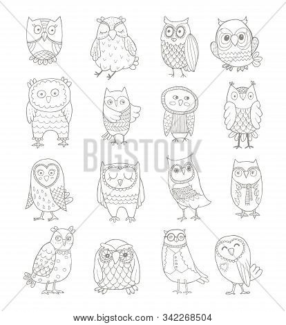 Vector Set Of Line Owls. Stylized Hand Drawing