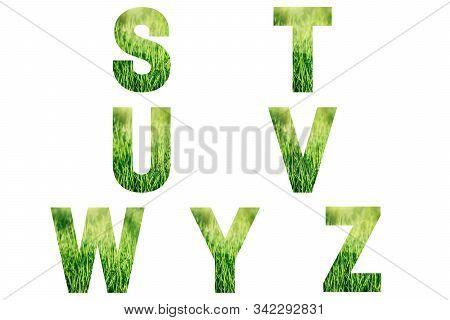 Green Font Alphabet S, T, U, V, W, Y, Z Made Of Fresh Green Grass Background.