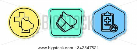 Set Line Veterinary Clinic Symbol, Veterinary Clinic Symbol And Clipboard With Medical Clinical Reco