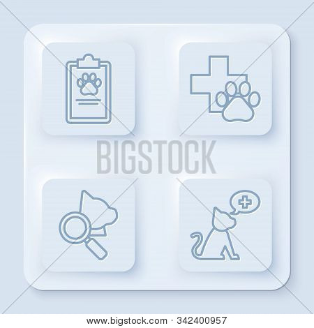 Set Line Clipboard With Medical Clinical Record Pet, Veterinary Clinic Symbol, Veterinary Clinic Sym