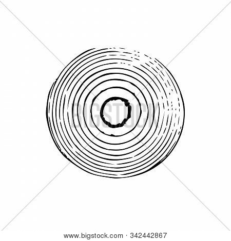 Tree Trunk With Rings. Annual Tree Growth Rings. Vector Illustration Isolated On White Background.