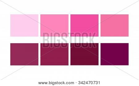 Color Palette Pink, Ligths And Shades For Cartoon Design. Template To Pick Color Swatches.