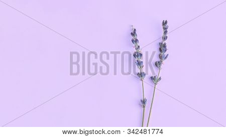 Bouquet Of Violet Lilac Purple Lavender Flowers Arranged On Table Background. Top View, Flat Lay Moc