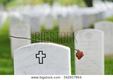 dried rose and gravestone in Arlington National Cemetery
