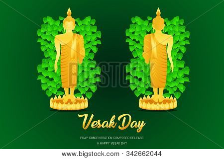 Vesak Day Buddha Monk Phra Stand Front - Back View Pray Concentration Composed Release Front Of Pho