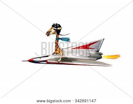 Funny Giraffe Pilot Fly Supersonic Jet Plane Fast