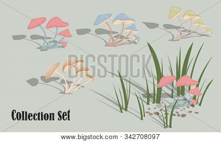 Multi-colored Mushrooms. Set Of Vector Images For Design. Vector Illustration.