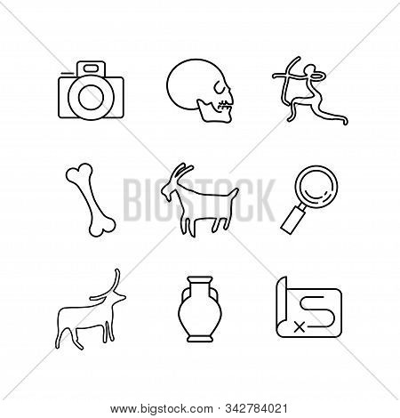 Anthropology And Archeology Icons Set For Science, School, University. Linear Style. Camera, Skull,